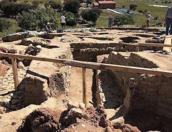 Oymaağaç'ta 3 Bin Yıllık Fındık Bulundu