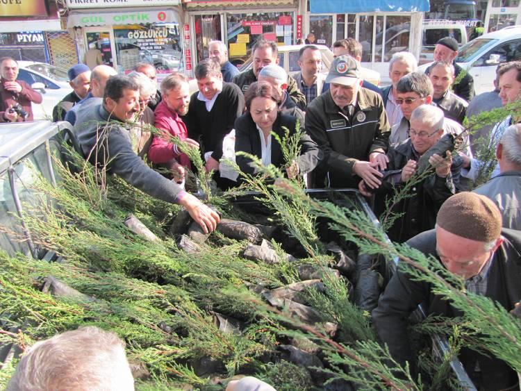 Vezirköprü Orman İşletme Müdürlüğü 15 Bin Adet Fidan Dağıttı